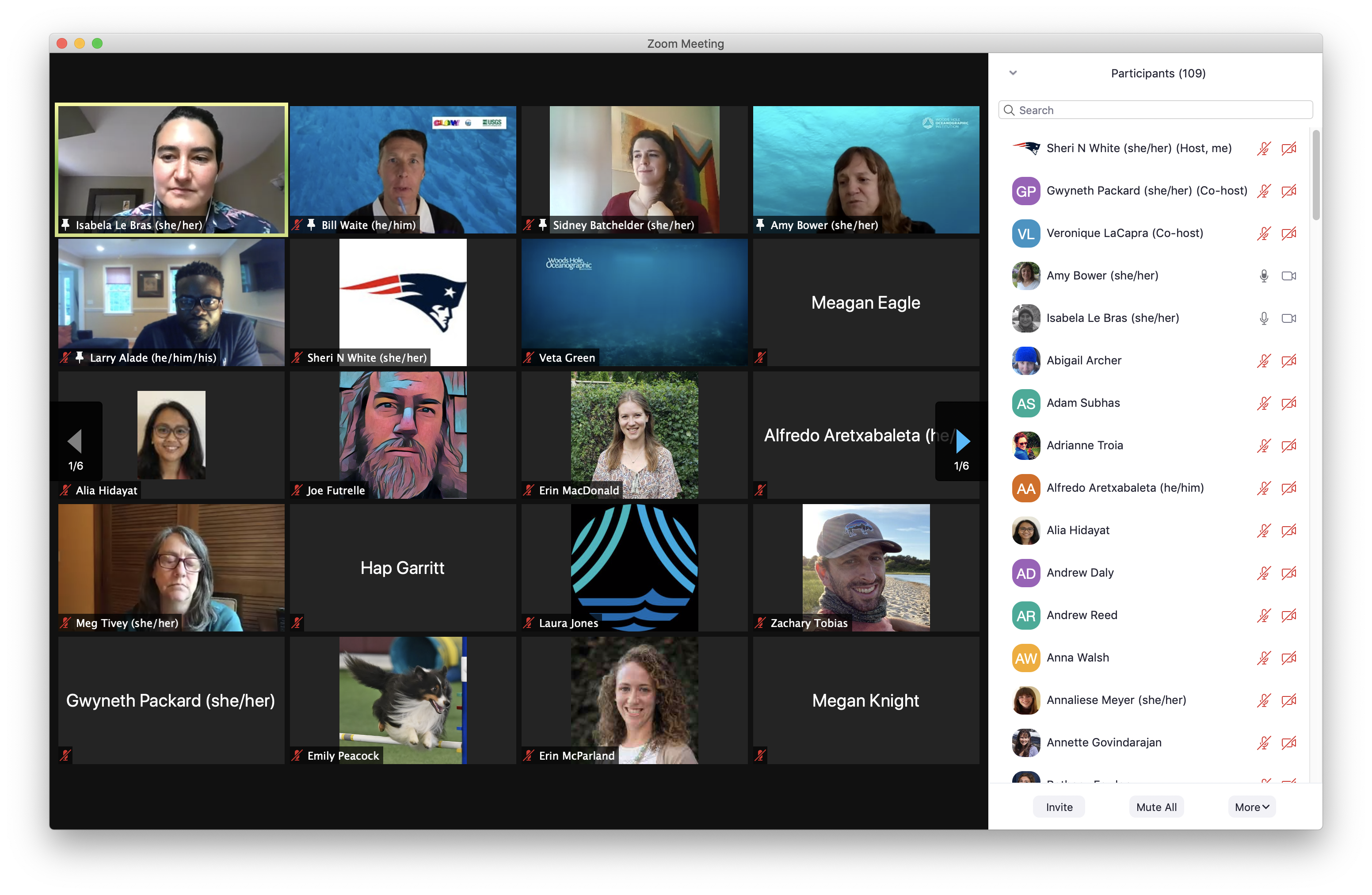 Screen-shot of end of zoom call, 109 participants still attending..