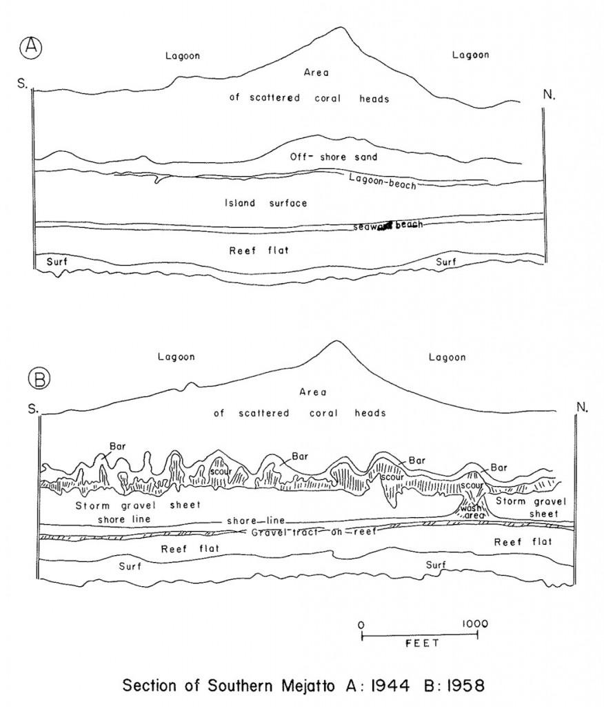 Blumenstock-1961-Jaluit-Ophelia-Impact