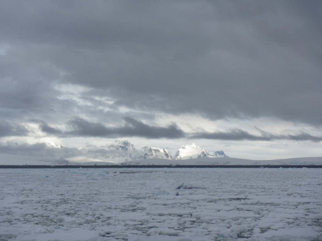 Small floes and brash ice greeted us as we made our way through the Gerlache Strait.