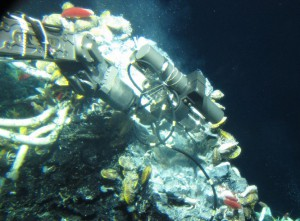An IGT sampler collects vent fluids at the high pressure found on the seafloor. (courtesy Stefan Sievert, ©WHOI)