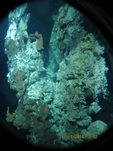Towering vents on the ocean floor. (courtesy Stefan Sievert, ©WHOI)
