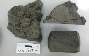 TAN1213_31-5