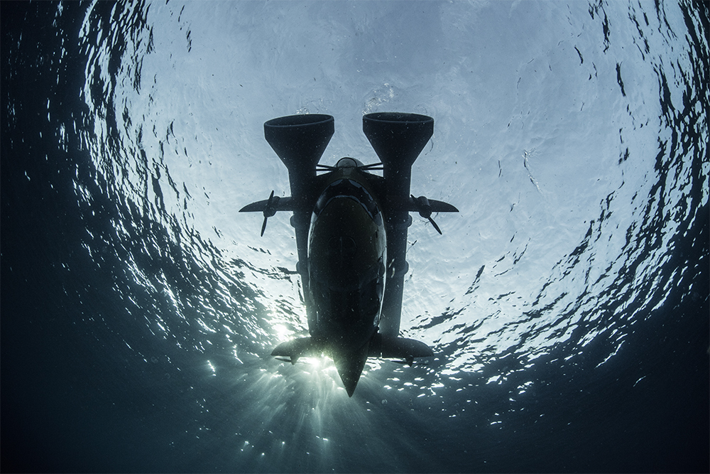 sentry-underwater