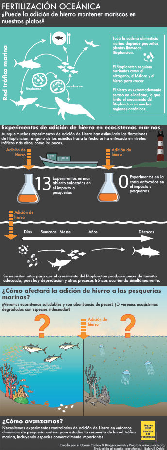 Spanish OF infographic