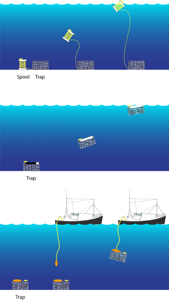 Figure 4. Trap recovery methods, including (top) bottomstowed rope, (middle) variable buoyancy traps, and (bottom) docking system.