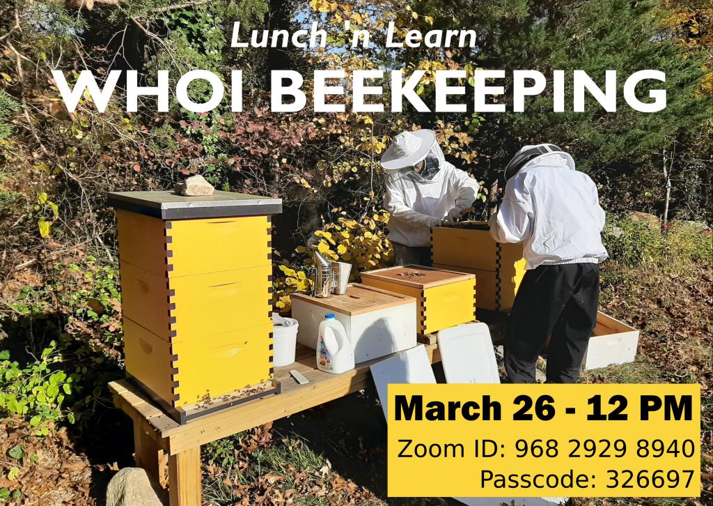 beekeeping_lunchnlearn (002)