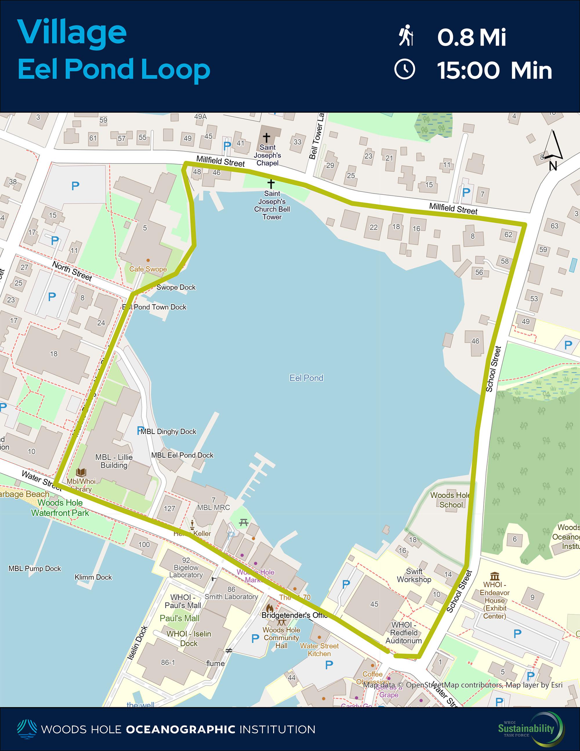 Eel Pond Loop