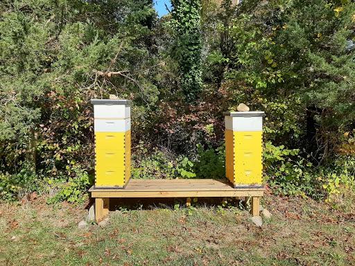 Summer hive set-up